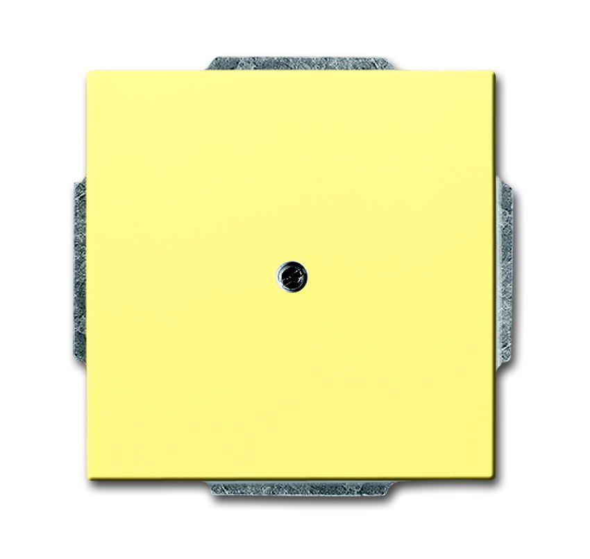 buschjaeger blindplaat met inzet wit buschjaeger in de. Black Bedroom Furniture Sets. Home Design Ideas