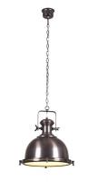 OLD BURDIE pendant lamp by Lucide 31471/46/16