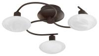 Serie 6380  Plafondlamp Trio Leuchten 6380031-24