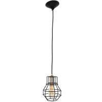Wired Trendy hanglamp Zwart by Steinhauer 7788ZW
