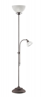 COUNTRY  Vloerlamp Reality by Trio Leuchten R4632-24