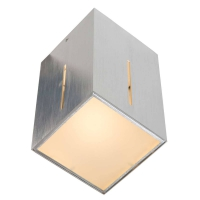 Ikaro moderne plafondlamp Staal by Steinhauer S0284S